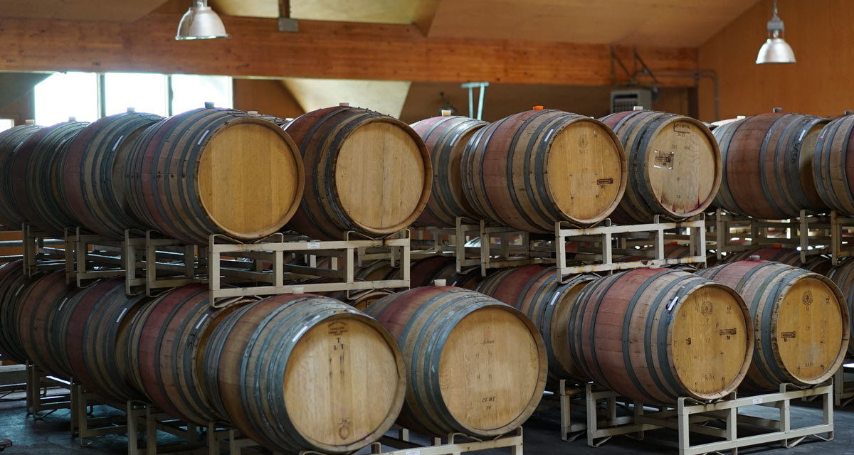 Oregon wine barrel room